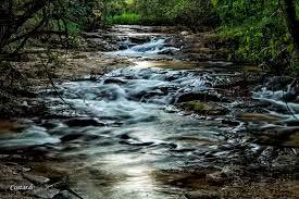 Cachoeira-Ponte-Amarela-Analandia-SP