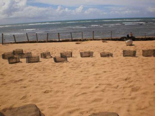 Praia-do-Forte-Salvador-Bahia