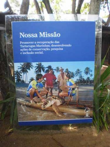 Projeto-Tamar-Salvador-Bahia